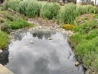 Departamento se compromete con la conservación y protección de humedales