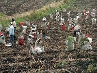 Productores de Cundinamarca denuncian aumentos desmedidos en el predial