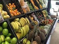 Alianza con Italia permitirá fortalecer el sector hortofrutícola en el país
