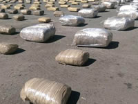 Incautan 670 kilos de marihuana en Soacha