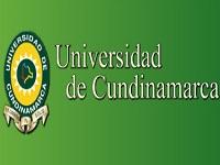 Abierta convocatoria para becas de estudio en la Universidad de Cundinamarca