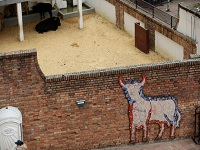 Se dio el primer aval a ley que prohíbe las corridas de toros