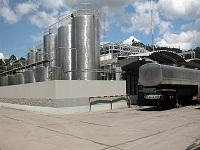 Plan de choque estabilizará la comercialización de leche en Colombia