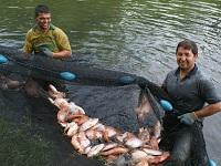 Recursos para pescadores del río Magdalena