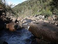Cundinamarca se unió al Día Mundial del Ambiente