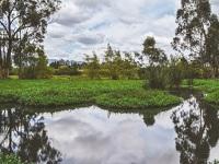 $2.300 millones para la protección de fuentes hídricas