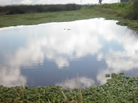 Histórica inversión para recuperar espejos de agua en Cundinamarca