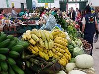 Nueva imagen  para la Plaza de mercado de Soacha