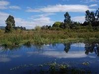 Disfrute de las caminatas ecológicas gratis en Bogotá
