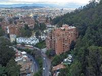 Árboles invasores en cerros orientales serán reemplazados