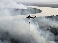 En el país la deforestación creció 44%
