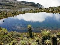 Los municipios que en el Páramo de Sumapaz se encuentran en consultas