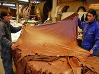 Cerradas 31 empresas curtidoras de cuero en Cundinamarca