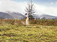 En Soacha  revive  el Parque Arboleda Xua
