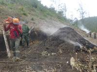 En Soacha capturan a cuatro personas por delitos ambientales