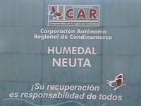 CAR sembrará 5.600 árboles en el Humedal Neuta de Soacha