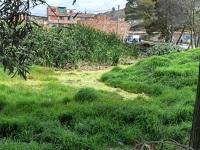 Humedal Tierra Blanca tendrá observatorio ambiental