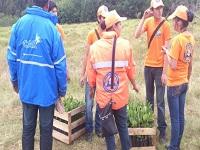 Sembrarán 5.000 árboles en Suesca