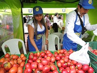 Millonaria inversión para el sector agropecuario y la seguridad alimentaria