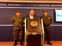 MinDefensa aseguró que aumentó el número de hectáreas de coca erradicadas