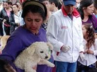 Con éxito inicia festival canino y felino en Soacha