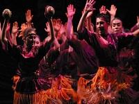 Bailar podría reducir el envejecimiento cerebral