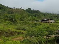 Delincuentes despojaron más de 4 mil predios en Bogotá y Cundinamarca