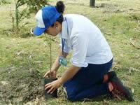 Avanza restauración ecológica en el Humedal Neuta