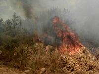 En el departamento persiste la quema de vegetación