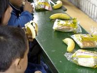 Suspensión de alimentación escolar enfrenta a Ministra y alcalde de Soacha