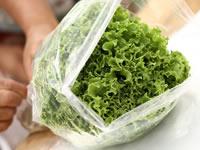 En los hogares de  Soacha se promueve los cultivos hidropónicos