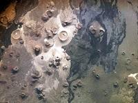 Misteriosas estructuras de piedra halladas gracias a Google Earth