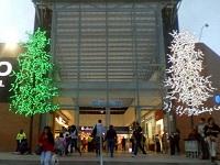 Encendido de  luces de navidad y actividades en noviembre   en Mercurio