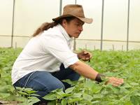 SENA tiene $19 mil millones para emprendedores colombianos