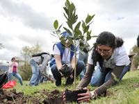 Ciudad Verde lucha por recuperar el espacio público y ambiental