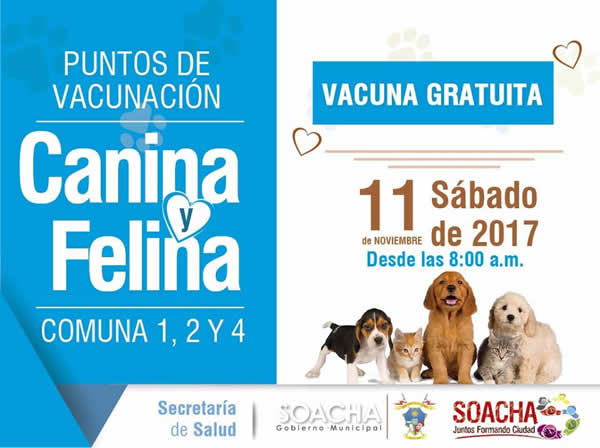 Jornada de vacunación canina y felina para las comunas 1, 2 y 4
