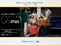 MinCultura lanzará Simus, plataforma que compila la información del sector musical colombiano