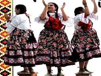 Sentimiento Colombiano, grupo soachuno de danza, despide el año