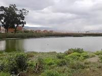 2017 fue el año de la recuperación y protección de los humedales en Soacha