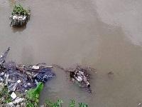 Alianza entre la fuerza pública y la CAR de Cundinamarca para defender el río Bogotá