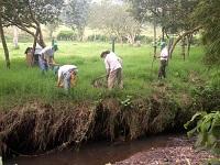 Millonaria inversión para mantenimiento forestal en Guaduas
