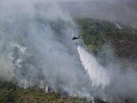Incendios forestales afectan a 19 departamentos del país