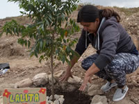 Siembran primeros 300 árboles en ronda del Río Soacha