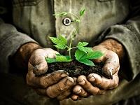 Cundinamarca será modelo de práctica ambiental en el país