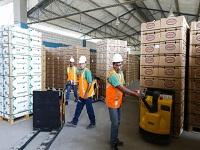 Durante el primer mes del año exportaciones colombianas sumaron US$3.192,3 millones