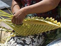 Soachunos y cundinamarqueses siguen utilizando la palma de cera el Domingo de Ramos