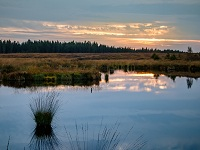 Cundinamarca protege territorios de agua