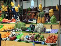 Agro cundinamarqués tendrá su propio espacio en plazas de Bogotá