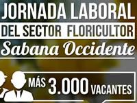 Más de 3 mil puestos de trabajo en feria de empresas floricultoras en Facatativá
