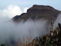 Cundinamarca fortalece política pública contra el cambio climático
